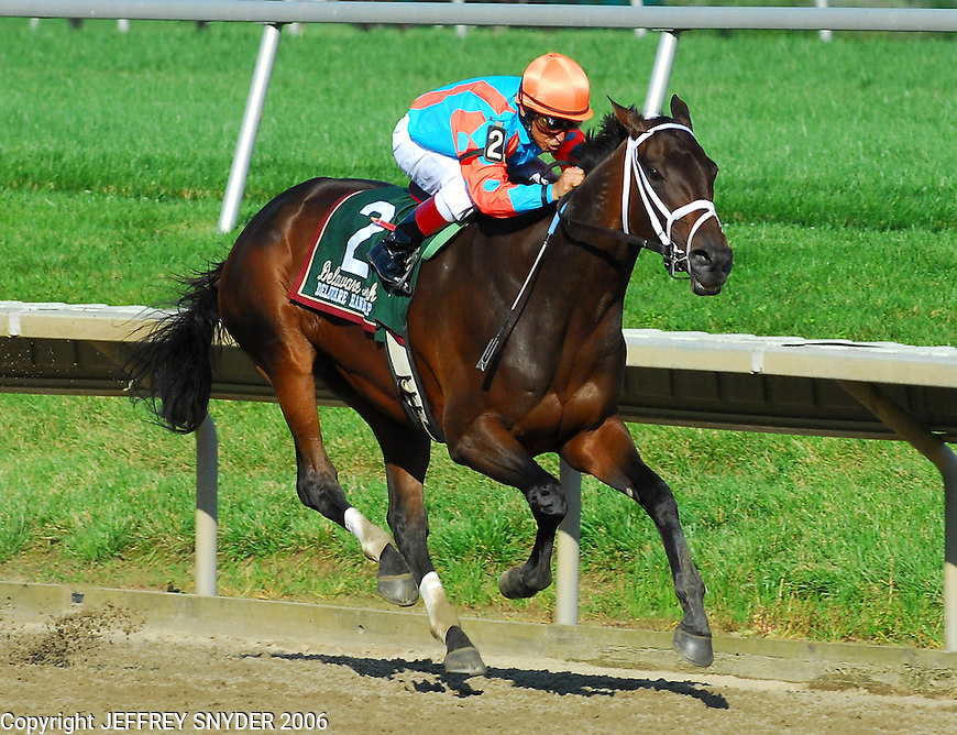 Delaware Stakes 2006