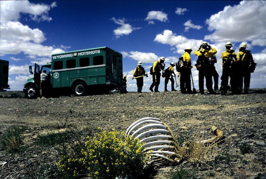 Archive: Wyoming Hotshots