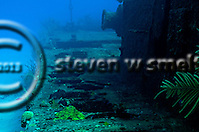 Shipwrecks (Steven W Smeltzer)