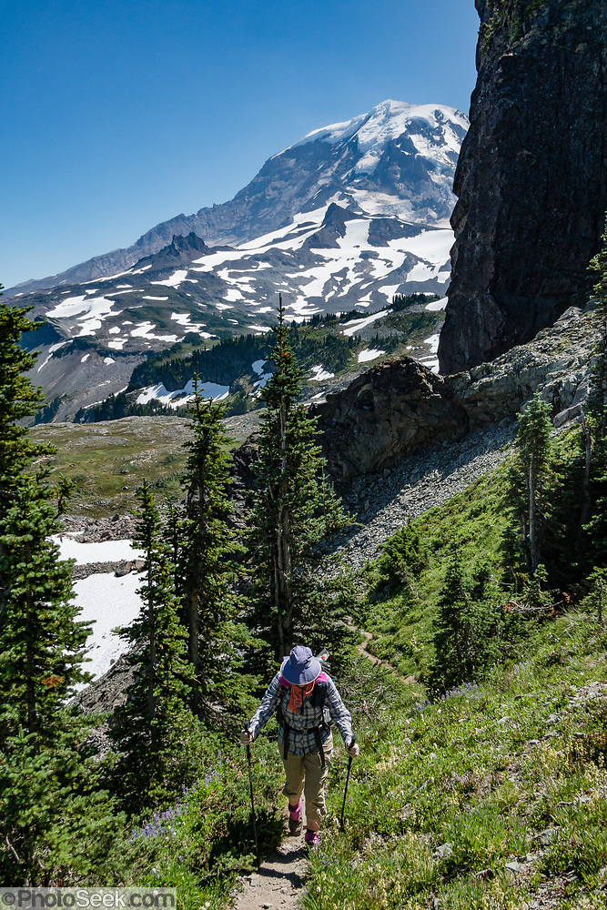 Mount Rainier NP: Headwaters of Mist Park, along Spray Park–Knapsack Pass Loop, Washington, USA. (© Tom Dempsey / PhotoSeek.com)