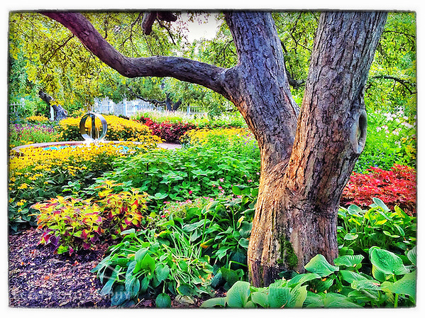 "The garden at Prescott Park in Portsmouth, New Hampshire. iPhone photo - suitable for print reproduction up to 8"" x 12"". (Jerry Monkman)"