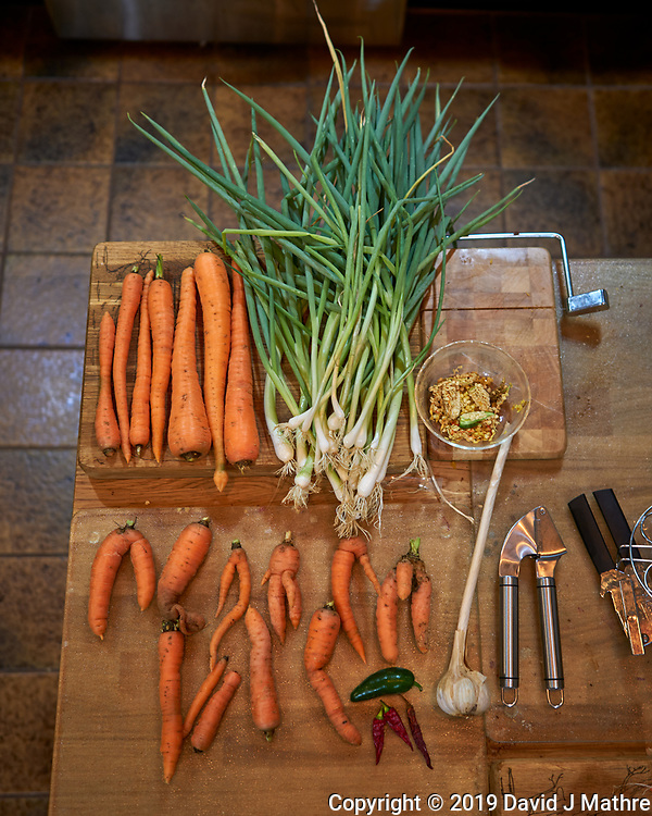 Carrots, Scallions, Garlic, Hot Peppers from Grow Tower #1. Image taken with a Leica CL camera and 23 mm f/2 lens (ISO 125, 23 mm, f/2, 1/50 sec). (DAVID J MATHRE)