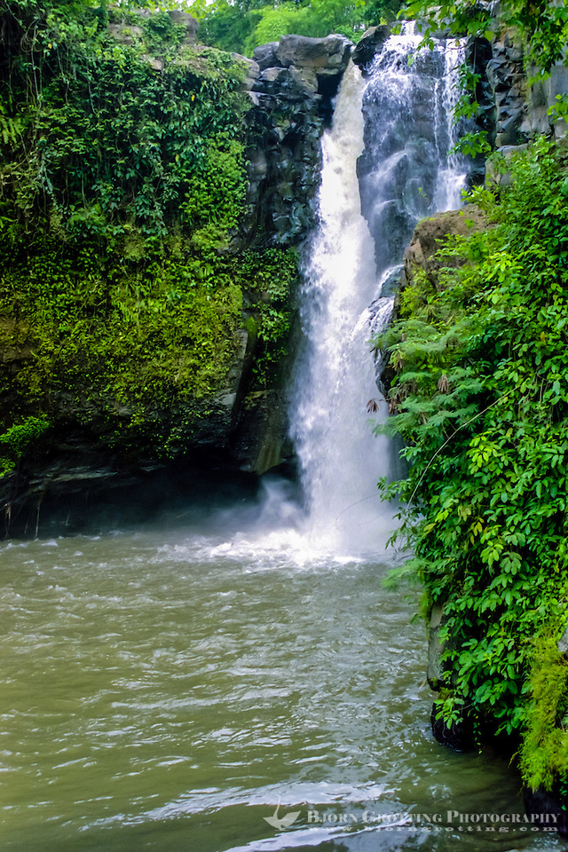 Bali, Gianyar, Tegenungan Waterfall. A very scenic place close to Kemenuh. You can swim in the pool in front of the waterfall, the water is supposed to have magical powers. (Photo Bjorn Grotting)