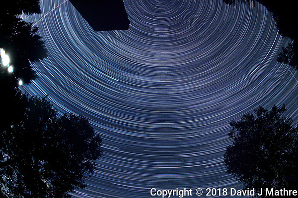 Star Trails 19:56-01:59. Composite of images taken with a Nikon D850 camera and 8-15 mm fisheye (ISO 100, 15 mm, f/5.6, 30 sec) (David J Mathre)
