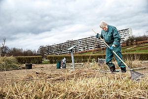 Fotoopgave: Billeder fra Blomsterhaven, hvor fotografen tog fotos af de frivillige.