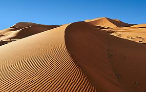 Sahara parabolic sand dunes of erg Chebbi, Morocco, Africa (Paul E Williams)