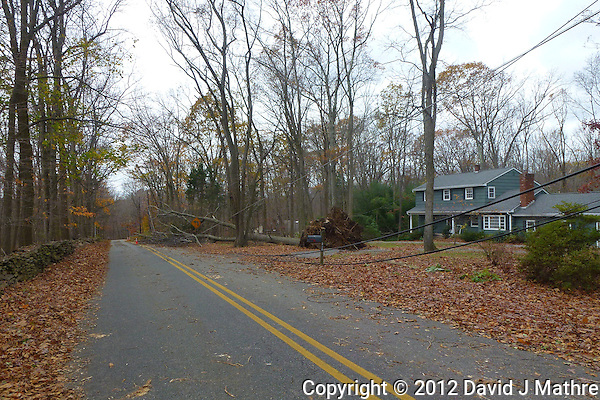 Hurricane Sandy Aftermath in Skillman New Jersey Day 3. Image taken with a Leica V-Lux 30 camera. (David J Mathre)