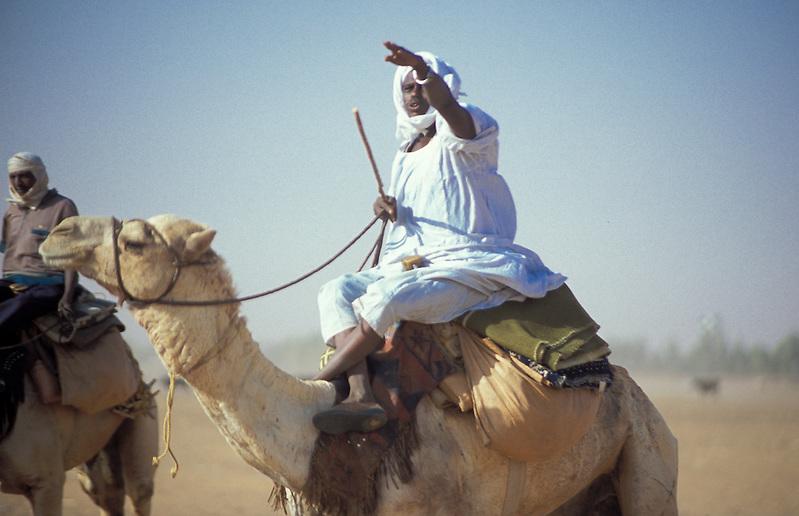 Native sitting on camel in desert, Omduman, Sudan, Africa (Michael Runkel)