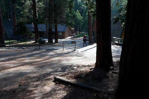 The 2009 Camp Coelho Summer Camp for children with epilepsy occurred at Camp Wawona in Yosemite. (bryan farley)
