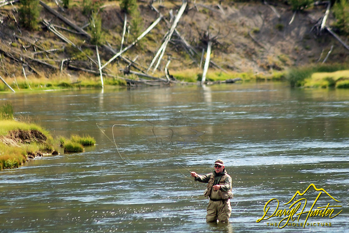 "Fly-fishing the Madison River In Yellowstone National Park (Daryl Hunter's ""The Hole Picture"" • Daryl L. Hunter has been photographing the Yellowstone Region since 1987, when he packed up his view camera, Pentex 6X7, and his 35mm's and headed to Jackson Hole Wyoming. Besides selling photography Daryl also publ/Daryl L. Hunter)"