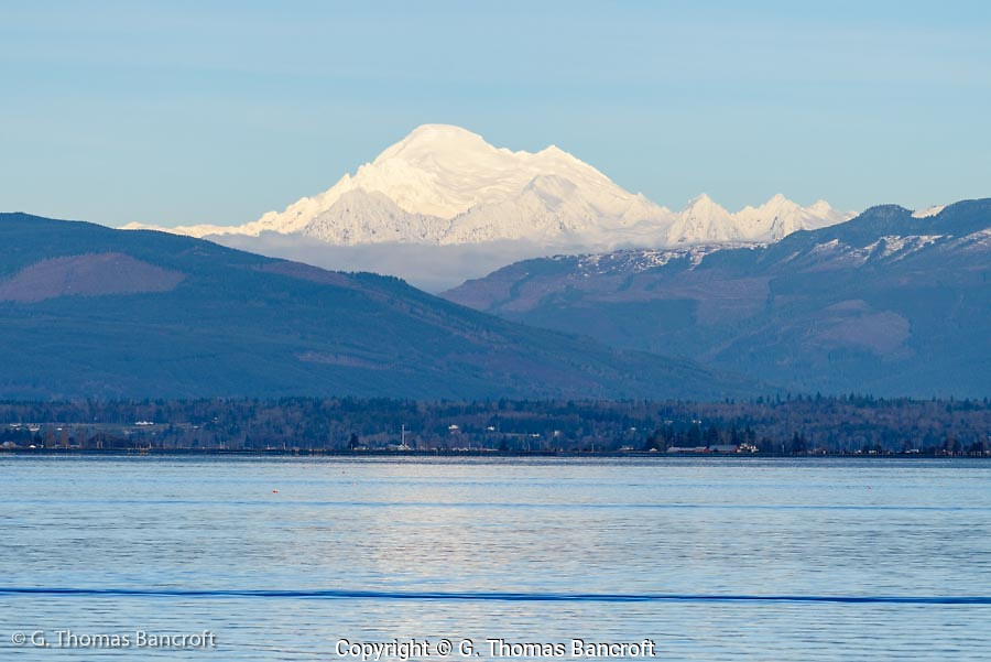 Mt. Baker presides over Padilla Bay. (G. Thomas Bancroft)