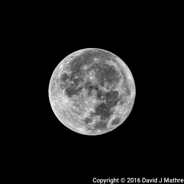 Full Moon. Autumn Nature in New Jersey. Image taken with a Nikon D800 camera and 500 mm f/4 VR lens + TC-E 20 teleconverter (ISO 100, 1000 mm, f/8, 1/250 sec). (David J Mathre)