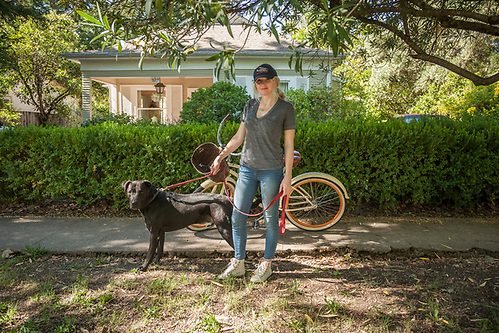 Paralegal Vanessa Cooper with her dog, Zeus, on Cedar Street in Calistoga (Clark James Mishler)