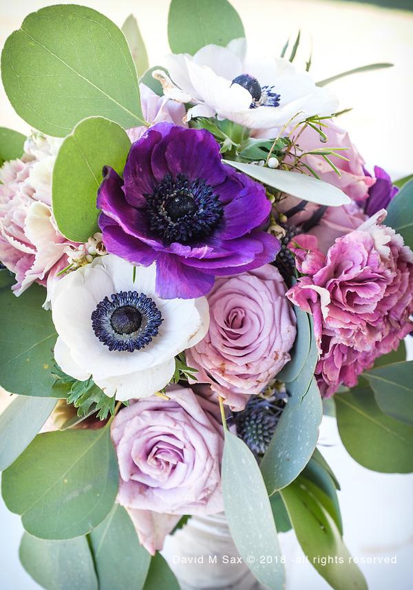10.21/18 - Bouquet 2.... (DAVID M SAX)