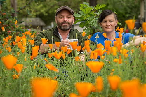 "Coffee Roaster J. Kirk Feiereisen and Actor/body worker, Jen Grigg, sit among their recent crop of California Poppies in the front yard of their Calistoga home. ""Each of us had been devorced for about two weeks when we met at the Hydro three years ago...we've been friends since and ""platonic"" roomates just recently."" ""Three years ago this yard was waist deep in weeds. Last year I put in the wood chips and this year poppies."" -J.Kirk Feiereisen (Clark James Mishler)"