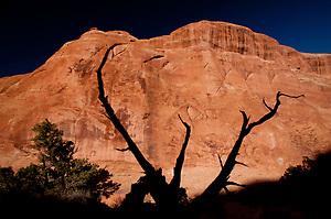 Devils Garden, Arches National Park, Utah, US (Roddy Scheer)