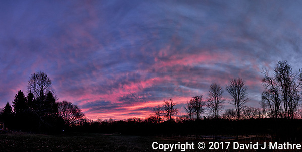 Colorful Autumn Sky at Dawn. Backyard Nature in New Jersey. Composite of seven images taken with a Fuji X-T1 camera and 16 mm f/1.4 lens (ISO 200, 16 mm, f/2.8, 1/60 sec) (David J Mathre)