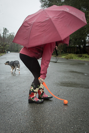 Mitzi Mishler runs her dog, Molly, on a very rainy morning in Calistoga (Clark James Mishler)