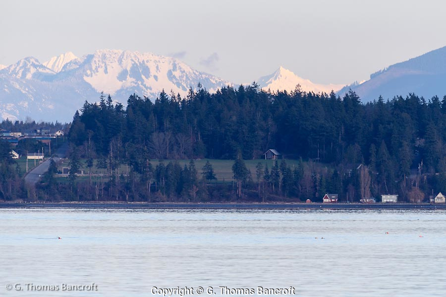 Glacier Peak shows among the closer mountains. (G. Thomas Bancroft)