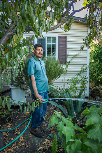 """I love working in my garden...it reminds me of growing up in Mexico.""  -Calistoga Elementary School Custodian and 30 year resident of Calistoga, Jose Pena, works in the garden surrounding his home on Second Street. (Clark James Mishler)"