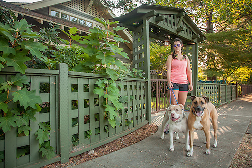 Bio-med tech and twenty year resident of Calistoga Alison Mutz is out for a walk with her dogs, Shelby and Thore, on Cedar Street. (Clark James Mishler)