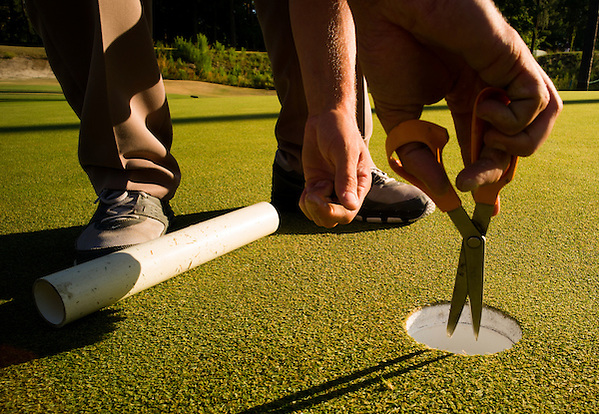 Detail photo of a hole being cut into a green during course setup before the final round of the 2014 U.S. Open at Pinehurst Resort & C.C. in Village of Pinehurst, N.C. on Sunday, June 15, 2014.  (Copyright USGA/Darren Carroll) (Darren Carroll/USGA Museum)