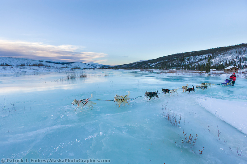 Musher crosses overflow on Ptarmigan creek near mile 101 checkpoint during the 1000 mile Yukon Quest sled dog race 2006, between Fairbanks, Alaska and Whitehorse, Yukon. Dubbed the toughest dogsled race in the world. (Patrick J. Endres / AlaskaPhotoGraphics.com)