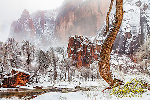 Winter at the Alter and the Pulpit in Zion National Park and the Temple of Sinawava and the Virgin River winding through them. Both the Temple of Sinawava and the Pulpit are found at the farthest end of Zion Canyon. (© Daryl L. Hunter - The Hole Picture)