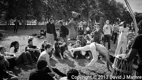 Capoeira Performance in Parc de Bercy. Late Spring Photowalk in Paris. Image taken with a Leica X2 camera (ISO 100, 24 mm, f/5, 1/200 sec). Semester at Sea Spring 2013 Enrichment Voyage. (David J Mathre)