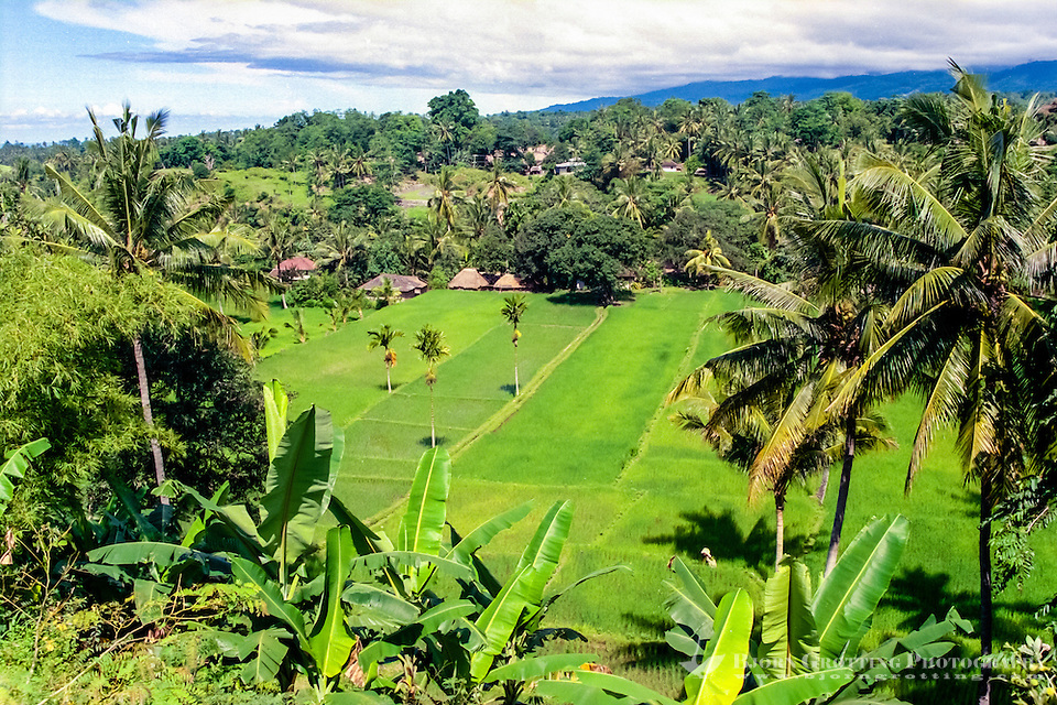Nusa Tenggara, Lombok. Rinjani. A traditional Sasak village on the slopes of Gunung Rinjani, this one is located south of Bayan. (Bjorn Grotting)