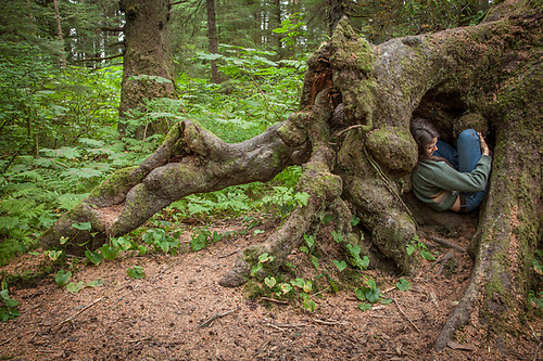 Participant in the Sitka Arts and Science Festival, Catherine Reynolds hides inside a tree deep in the forest at Totem National Historic Park (Clark James Mishler)