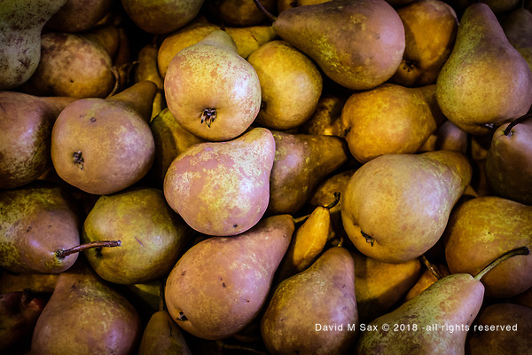 10.29.18 - Bin O'Pears.... (© David M Sax 2018 - all rights reserved)