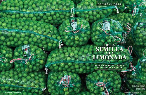 """""""De la semilla a la limonada"""".  EXPANSION 1155, Fotogalería (14 paginas) diciembre de 2014 (Prometeo Lucero)"""