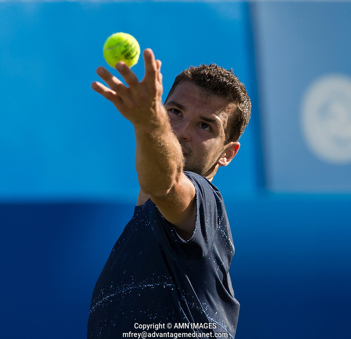 GRIGOR DIMITROV (BUL) Aegon Championships 2014 - Queens Club -  London - UK -  ATP - ITF - 2014  - Great Britain -  10th June 2014.  © AMN IMAGES (FREY/FREY- AMN Images)