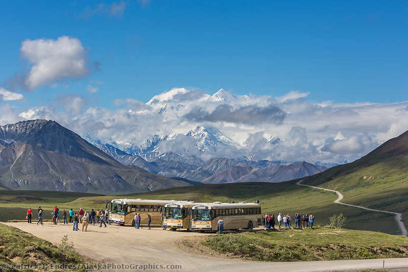 Tour buses at Stoney Dome overlook on the Park road in Denali National Park, Alaska. (Patrick J Endres / AlaskaPhotoGraphics.com)