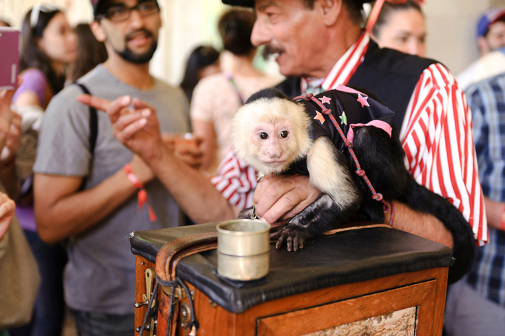 Photos of the Monkey Bar Goes Bananas party at The Great GoogaMooga festival at Prospect Park in Brooklyn, NY. May 19, 2012. Copyright © 2012 Matthew Eisman. All Rights Reserved. (Photo by Matthew Eisman/WireImage)
