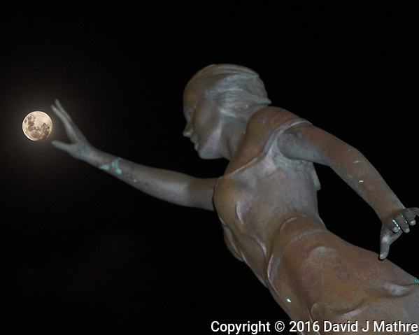 Reaching for the Moon. Image taken with a Leica T camera and 55-135 mm lens. (David J Mathre)