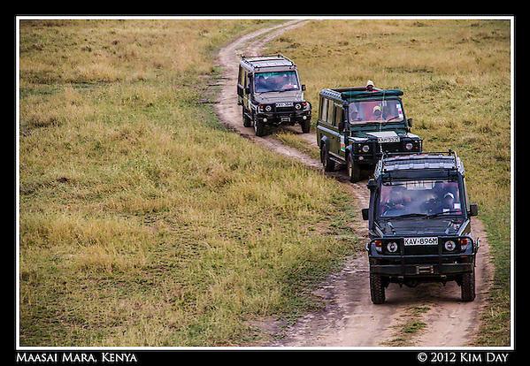 Land Rover Chase.Maasai Mara, Kenya.September 2012 (Kim Day)