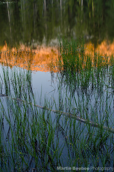 Evening alpenglow reflected in Hidden Lake, Eldorado National Forest, California (Martin D. Beebee)