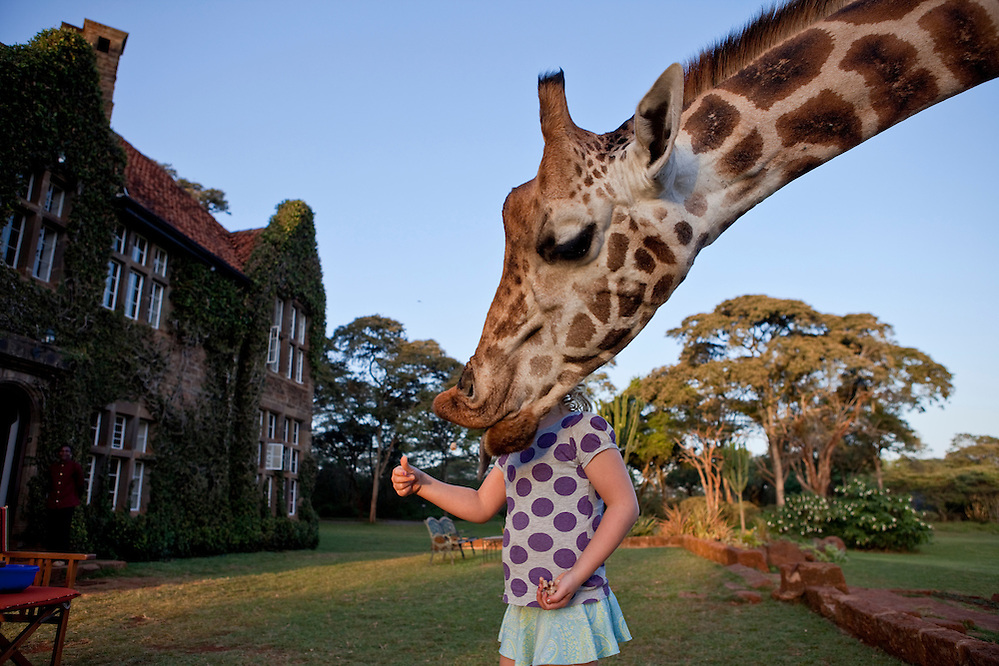 Third place, National Geographic Traveler Photo Contest 2011. Giraffe Manor, Nairobi, Kenya (Robin Moore)