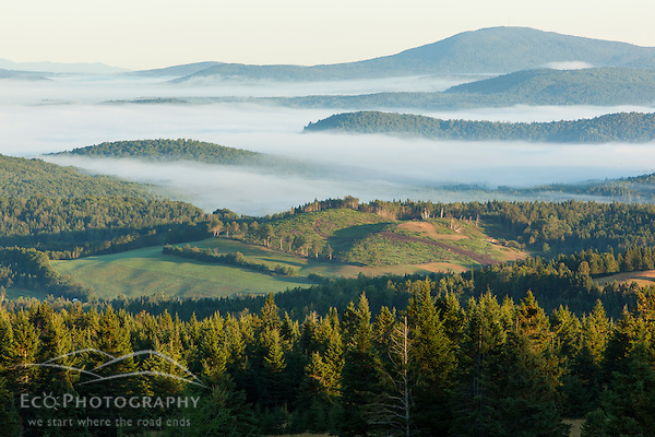 Fog in the Connecticut River Valley as seen from a hilltop farm in Stewartstown, New Hampshire. (Jerry Monkman)
