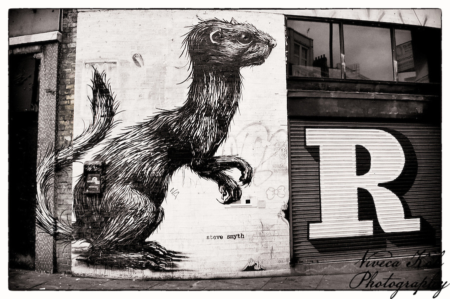 Street art by Roa and Eine, Shoreditch, East London (Viveca Koh)