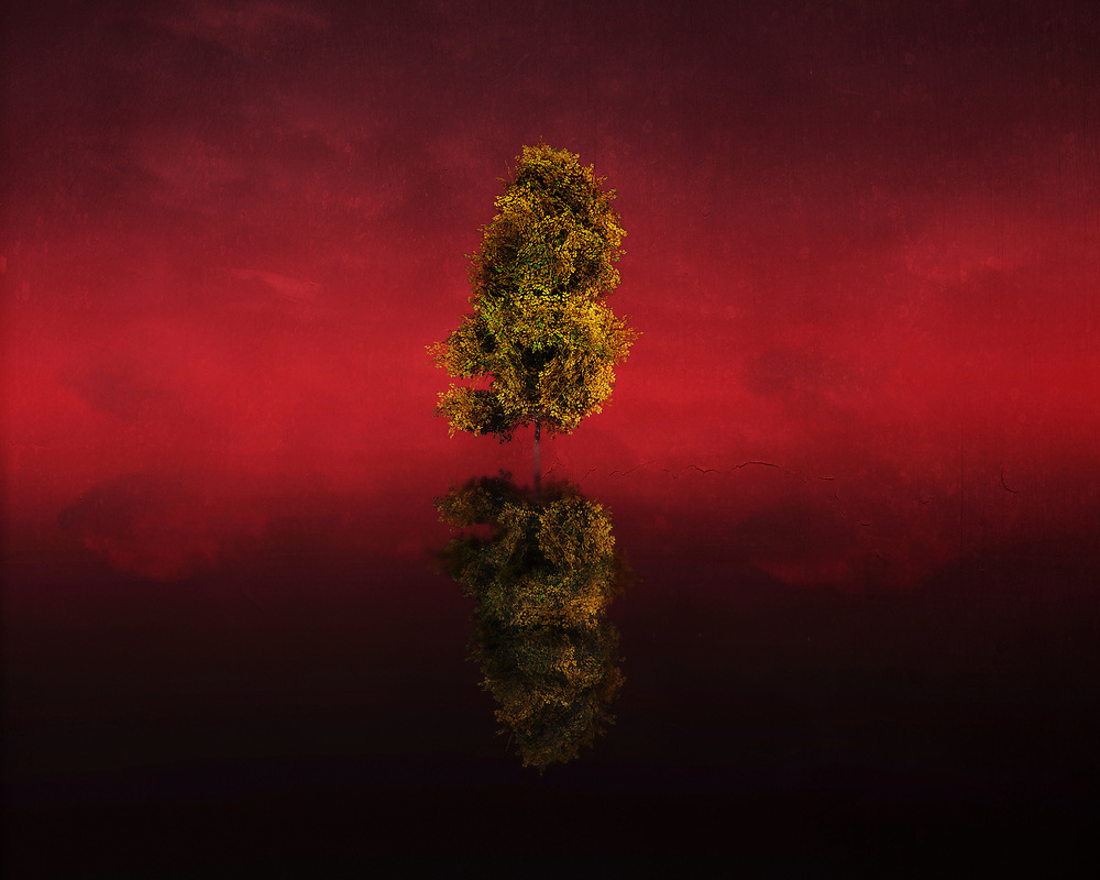 This stunning birch exists in a brilliant landscape of red. It stands simply, and it stands in the middle of the water. We know very little beyond this scene. We do know this scene could not possibly exist in reality. It stands to reason that this place only exists in dreams. If that is the case, then does it look familiar? This is a unique scene. In the end, it leaves us with more questions than answers. However, we love asking those questions. They fund our dreams. Available as t-shirts, wall art, or in the form of interior home décor products. (Jan Keteleer)