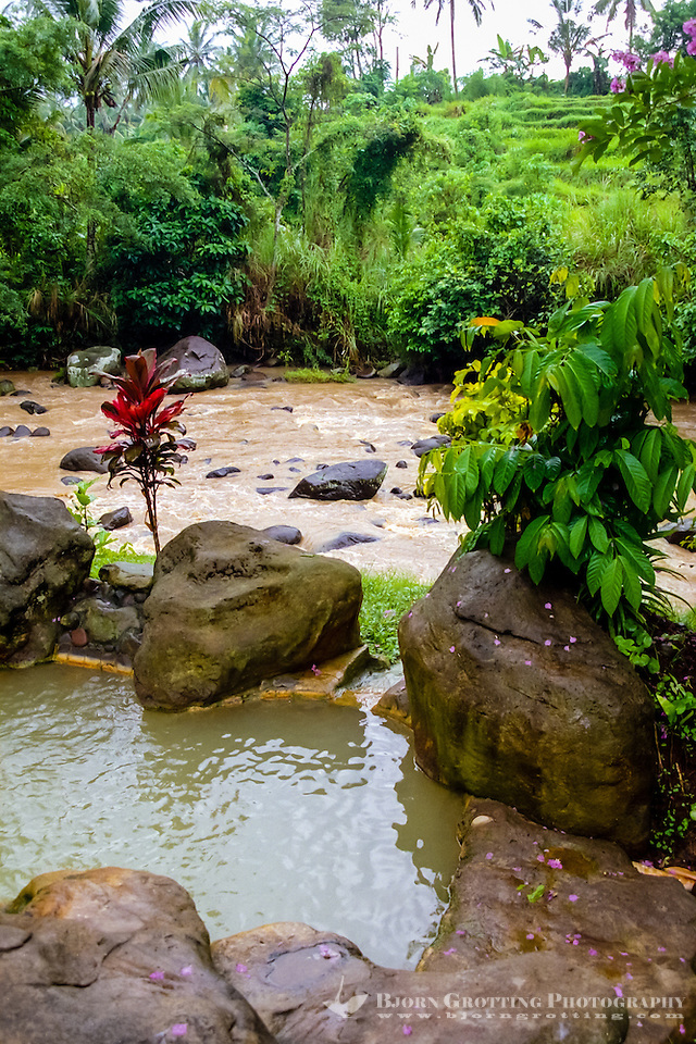 Bali, Tabanan, Yeh Panes. Hot springs and spa. A small pool, the Yeh Ho river in the background. (Photo Bjorn Grotting)