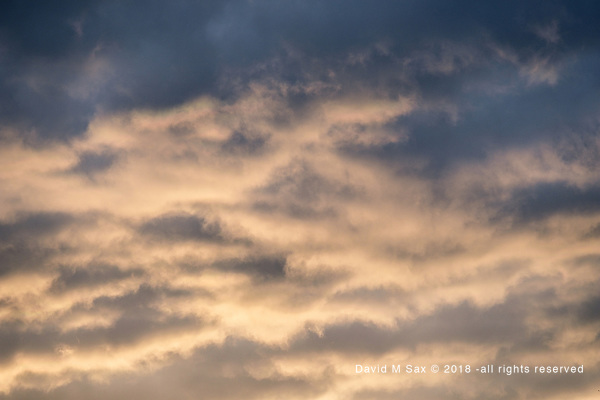 10.2.18 - Luminous Sky... (© David M Sax 2018 - all rights reserved)