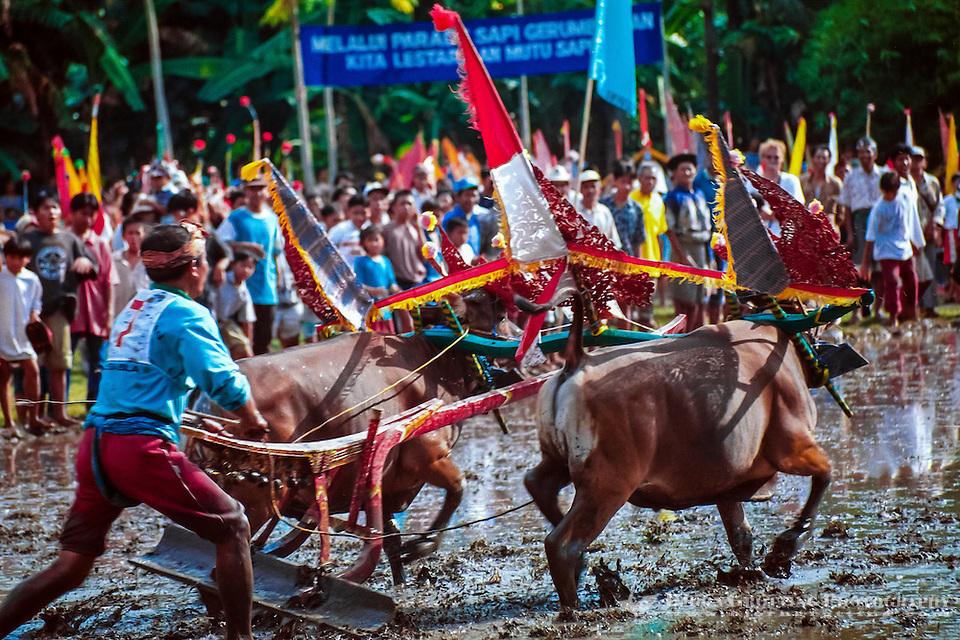 Bali, Buleleng, Lovina    <div title=