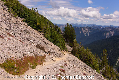 The trail hugs the southside of Burroughs Mountain. (G. Thomas Bancroft)