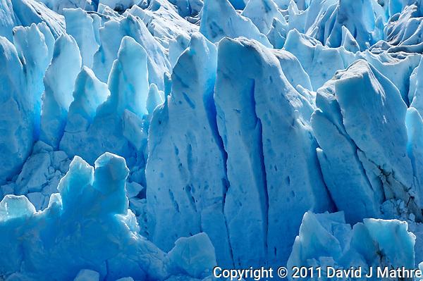 Perito Moreno Glacier (David J Mathre)