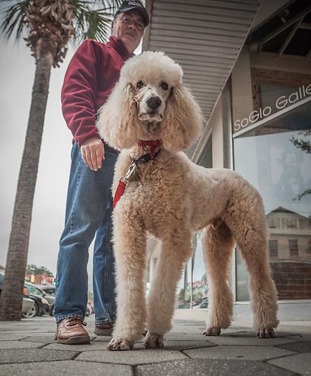 Bobert Lamoureuz with his celebrity dog, Pierre, Brunswick, GA.  lamoureux@dairentl.net (© Clark James Mishler)