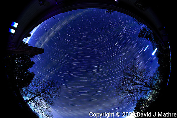 Star Trails looking up. Composite of images taken with a Nikon D850 camera and 8-15 mm fisheye lens (ISO 800, 11 mm, f/8, 30 sec). (DAVID J MATHRE)